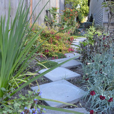 Transitional Landscape by Nyce Gardens