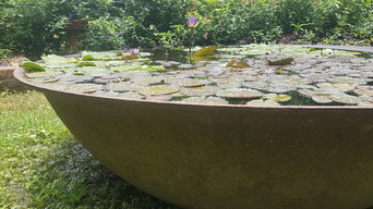 Blooming water lilly in 7' cast iron sugar kettle water feature