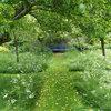 Conseils de pro pour transformer votre jardin en prairie fleurie
