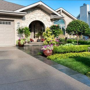 Aménagement d'un jardin sur toit contemporain de taille moyenne et l'été avec une entrée ou une allée de jardin, une exposition ensoleillée et des pavés en pierre naturelle.