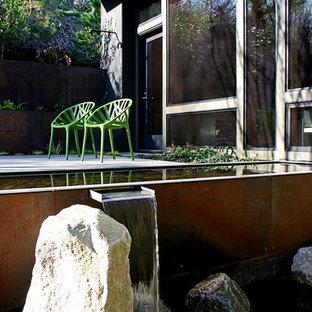 Idéer för en modern trädgård, med en fontän och trädäck