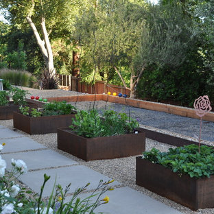 This is an example of a contemporary vegetable garden landscape in San Francisco.