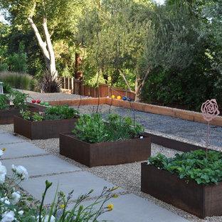 Свежая идея для дизайна: огород на участке в современном стиле - отличное фото интерьера