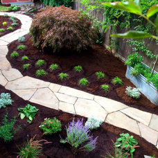 Traditional Landscape by beautiful bones and purple stones