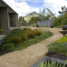 Midcentury Landscape by Jeffrey Gordon Smith Landscape Architecture