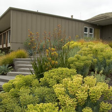 Midcentury Exterior by Jeffrey Gordon Smith Landscape Architecture