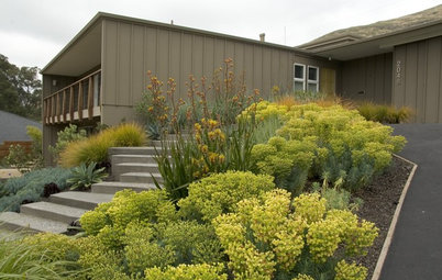 Houzz Call: Show Us Your Favorite Garden Combinations for Fall Planting