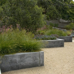 Inspiration for a mid-century modern retaining wall landscape in San Luis Obispo.
