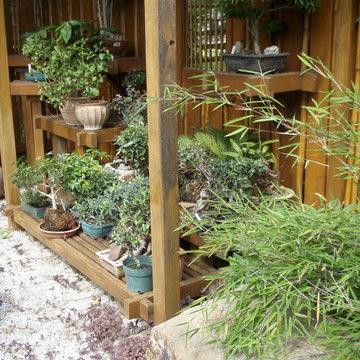 Bonsai Display Garden