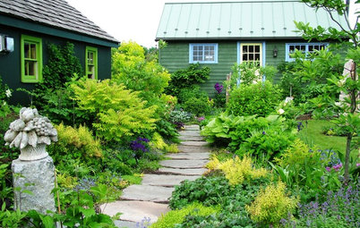 4 Things You Should Do for a Healthier Landscape