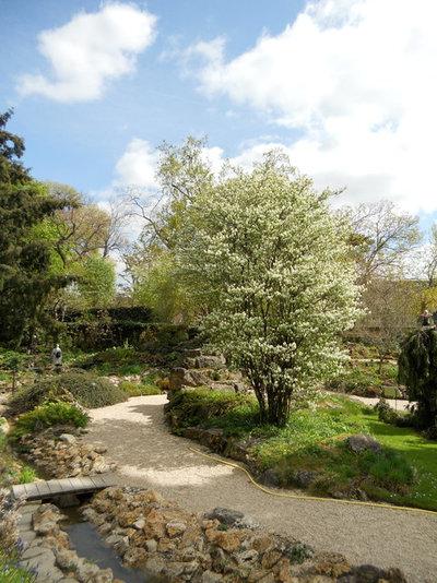 Landscape by Paintbox Garden