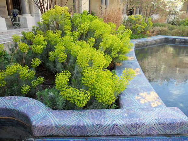Contemporary Landscape by Paintbox Garden