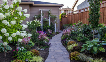 Bothell Backyard Renovation