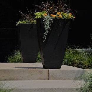 Formal Garden Floral Design on formal flower gardens, formal tropical gardens, formal victorian gardens,