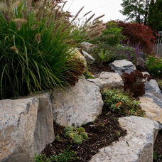 Traditional Landscape by Tellurian Gardens