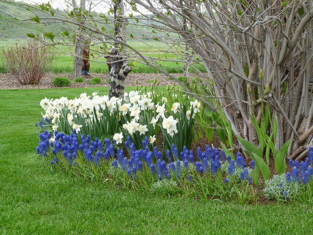 Traditional Landscape by Teton Gardens