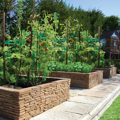 Tomatoes and other vegetables in raised brick beds