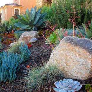 オレンジカウンティの春の地中海スタイルのおしゃれな前庭 (ゼリスケープ、砂利舗装) の写真