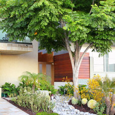 Contemporary Landscape by Creative Atmospheres, Inc.
