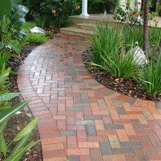 Traditional Landscape by Design Elite Tampa Bay