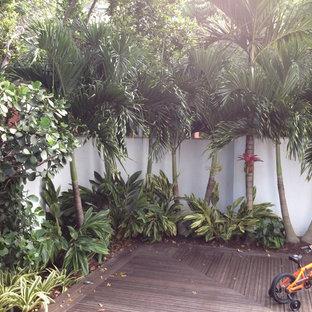 Idee per un piccolo giardino tropicale dietro casa con pedane