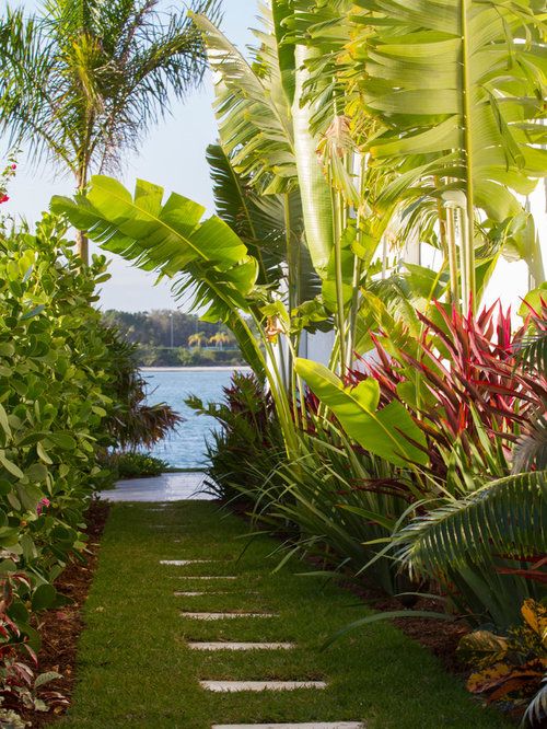 Tropical garden houzz for Tropical garden design