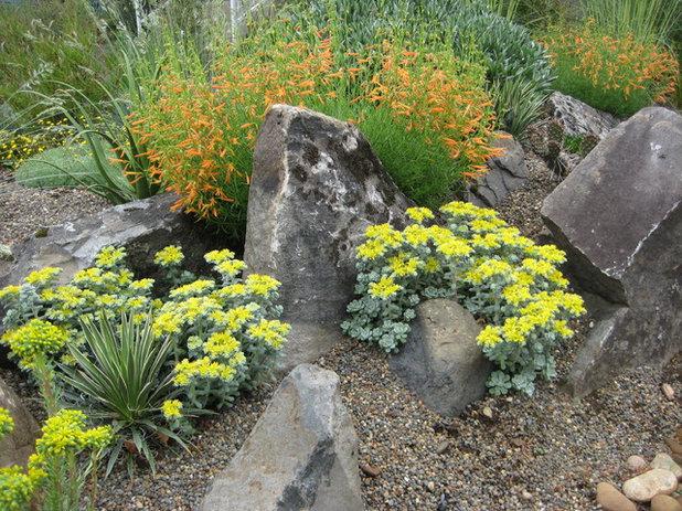 Garden by Xera Plants