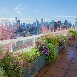 Ispirazione per un piccolo giardino moderno esposto in pieno sole sul tetto