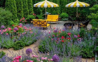 Go for Baroque for a Vivacious, Colorful Garden