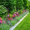 Farben im Garten: Diese 6 Tipps helfen bei der Gestaltung