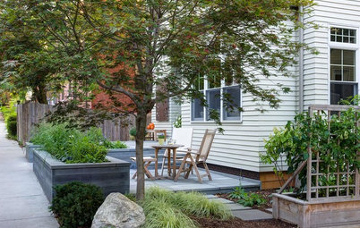 A New England Front Yard Designed for Relaxation and Resilience