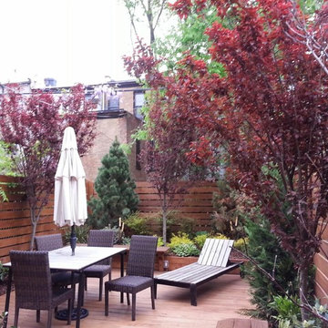 Brooklyn NYC townhouse rear yard landscape design renovation: out door dining