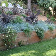 Contemporary Landscape by Bella Vita Garden Design