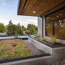 Modern Landscape by CleverHomes presented by Toby Long Design