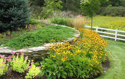 Make This Fall's Garden the Best Ever