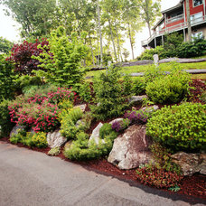 Traditional Landscape by Gardens for Living