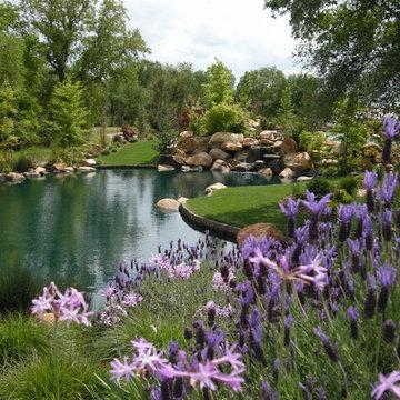 Bushnell Landscape Design-Build-Love.