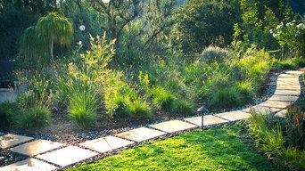 Butterfly Meadow - Back Yard