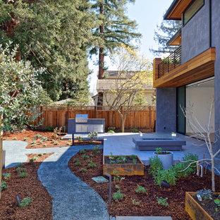 Photo of a mid-sized contemporary partial sun backyard concrete paver formal garden in San Francisco.