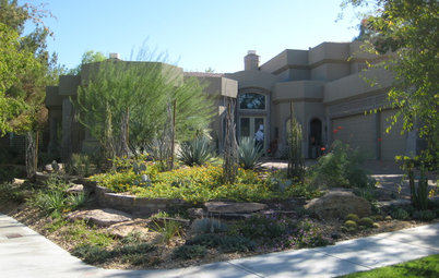 Perfect Southwest Gardening Lush Garden In The Las Vegas Desert
