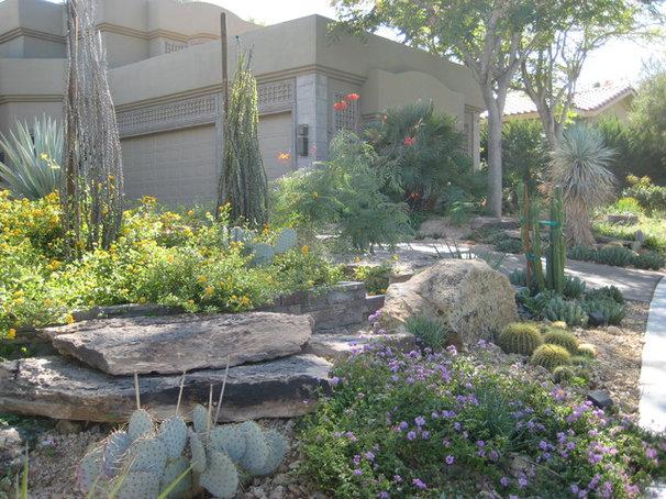 Mediterranean Landscape by Sage Design Studios, Inc.