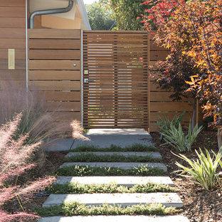 Esempio di un giardino minimalista con un ingresso o sentiero e pavimentazioni in cemento
