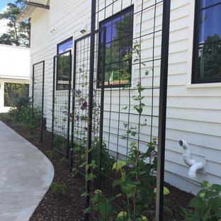 Inspiration för moderna uppfarter i full sol längs med huset på sommaren, med en vertikal trädgård