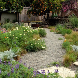 This is an example of a mediterranean backyard xeriscape in San Luis Obispo with a fire feature and gravel.