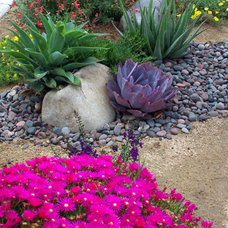 Traditional Landscape by California Plantscapes
