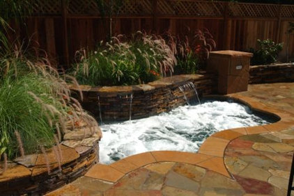 traditional landscape by California Pools