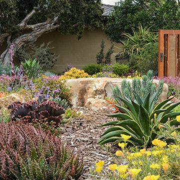 California Ranch Dreaming