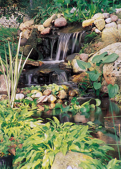 Traditional Garden by California Waterscapes