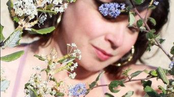 California Wild Lilac Garden