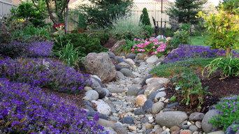 Calming Creek